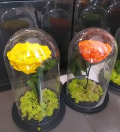 DELUXE FLOWERS